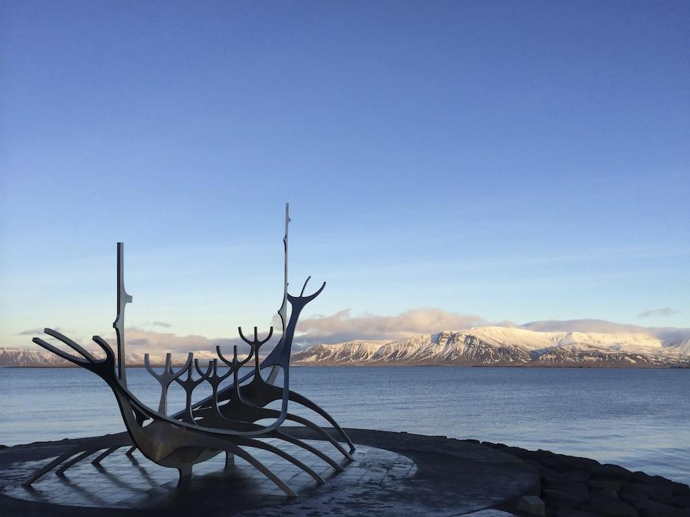 Vegan in Island: Eine Woche Reykjavík im Januar