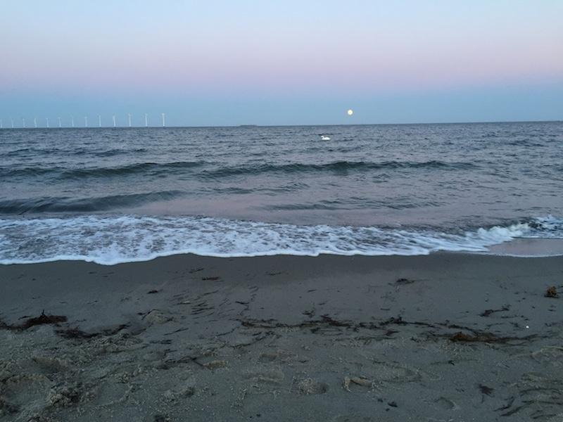 Am Abend am Amager Strandpark