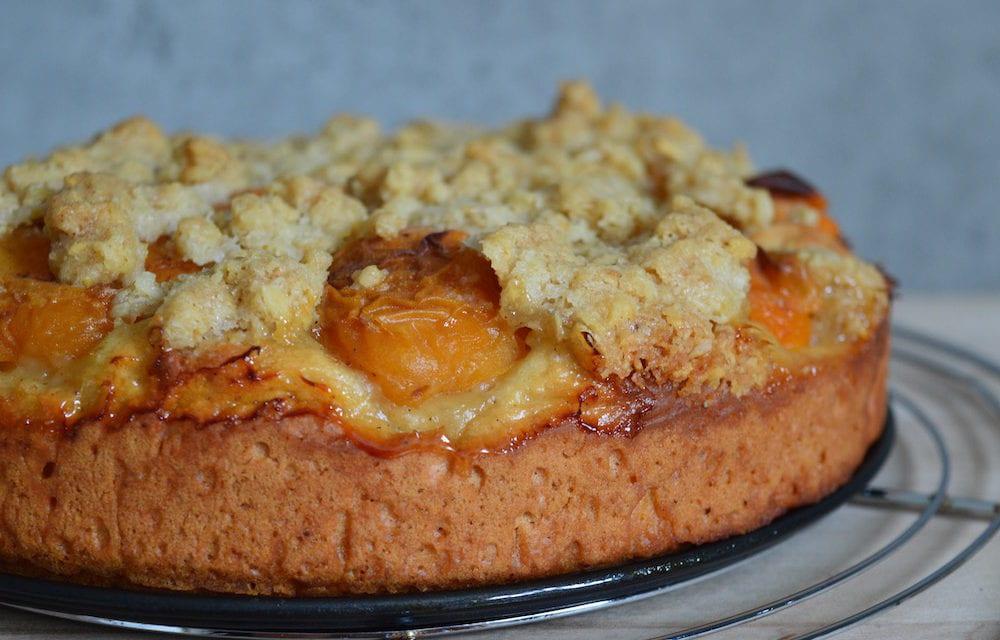 Quarkiger Aprikosenkuchen mit Streuseln