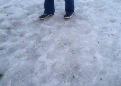 Unterwegs auf Eis